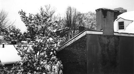 roof photo by alexandria levin